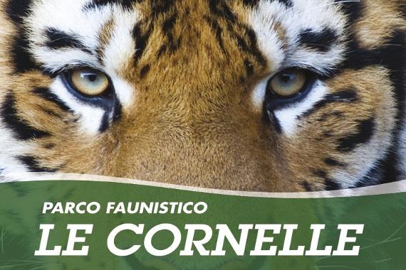 CORNELLE动物园